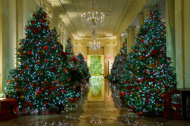 WASHINGTON, DC - NOVEMBER 30: Christmas decorations are on display in the Cross Hall of the White House on November 30, 2020 in Washington, DC. This year's theme for the White House Christmas decorations is